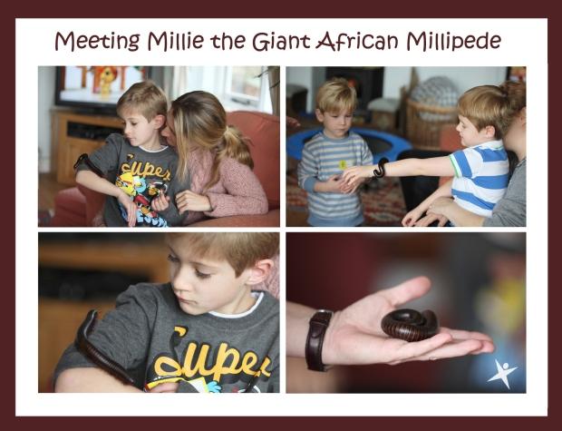 Meeting Millie