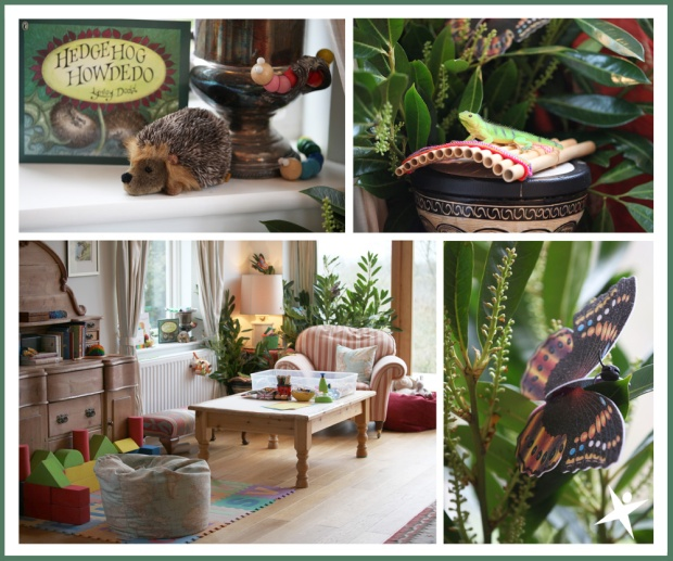 garden room for the meet the animals session