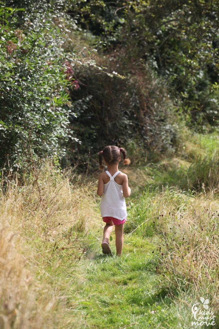 walking in the meadow