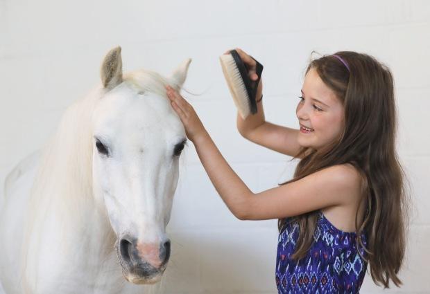 Zara grooming Blue